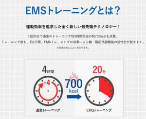EMSとは・・・