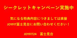 スクリーンショット (249)