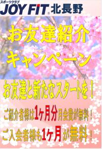 紹介キャンペーン受付中