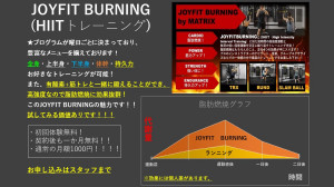 JOYFIT BURNING グラフ1